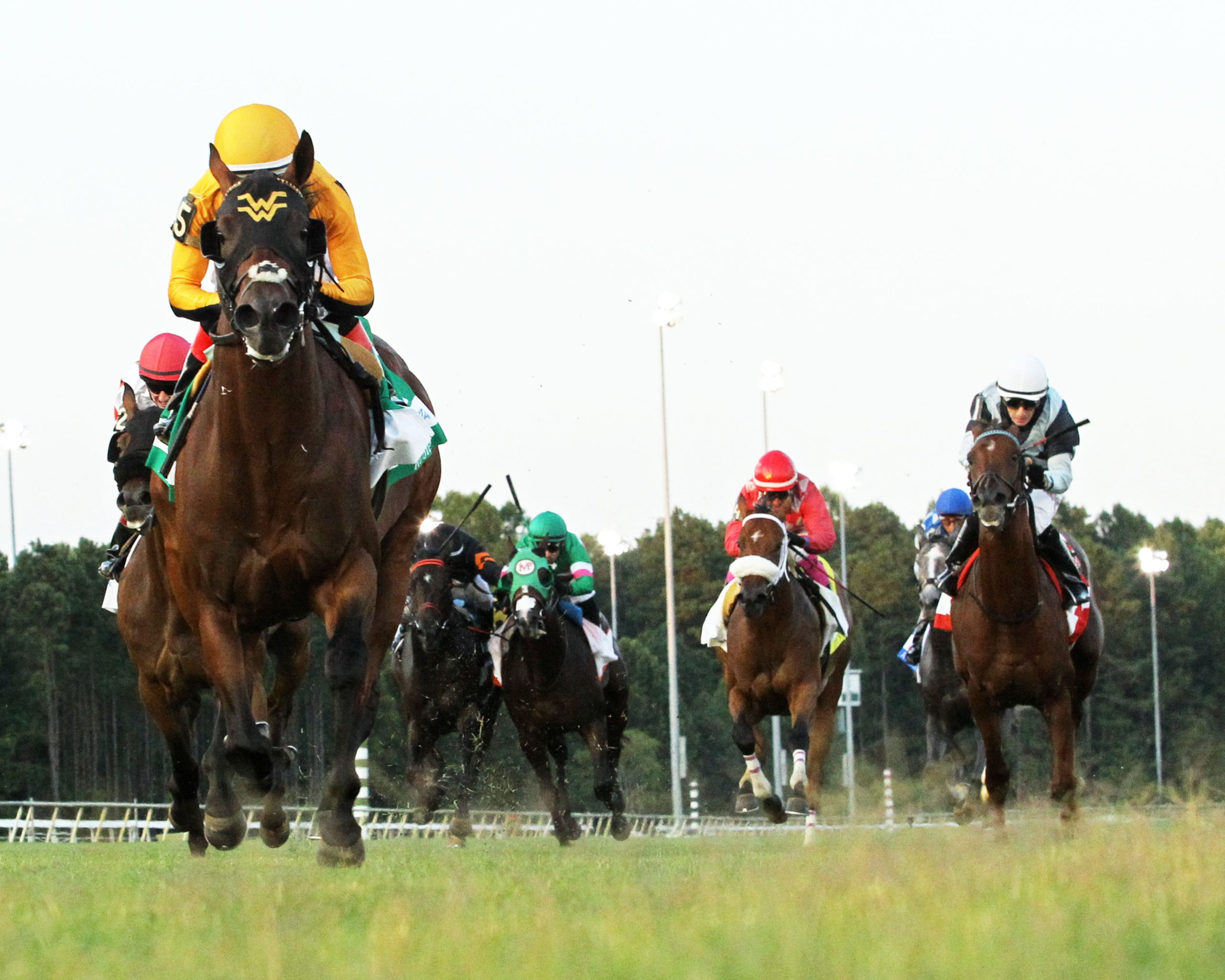 Live Racing at Colonial Downs in New Kent