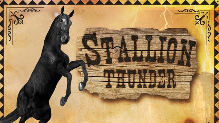 Picture for Stallion Thunder
