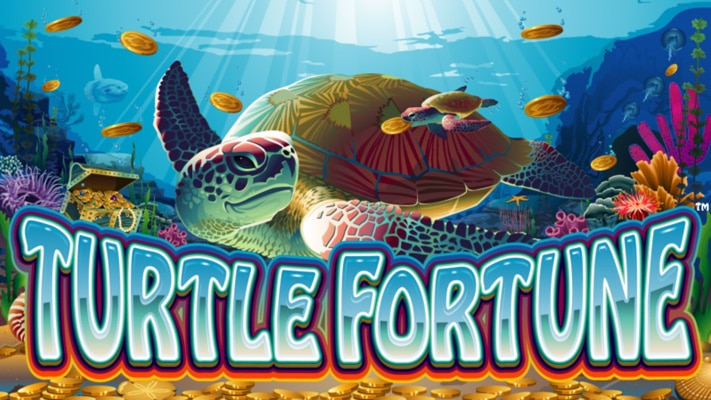 Picture for Turtle Fortune