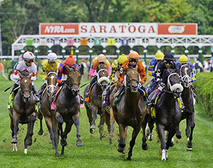 Summer Stakes Lineup